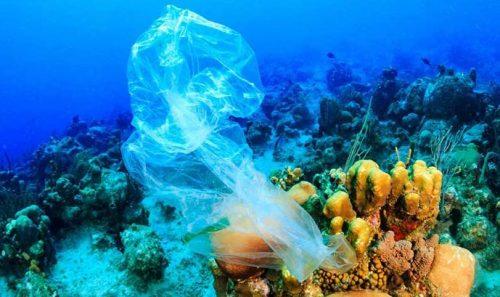 Global Tourism Plastics Initiative Announces Third Round of Signatories